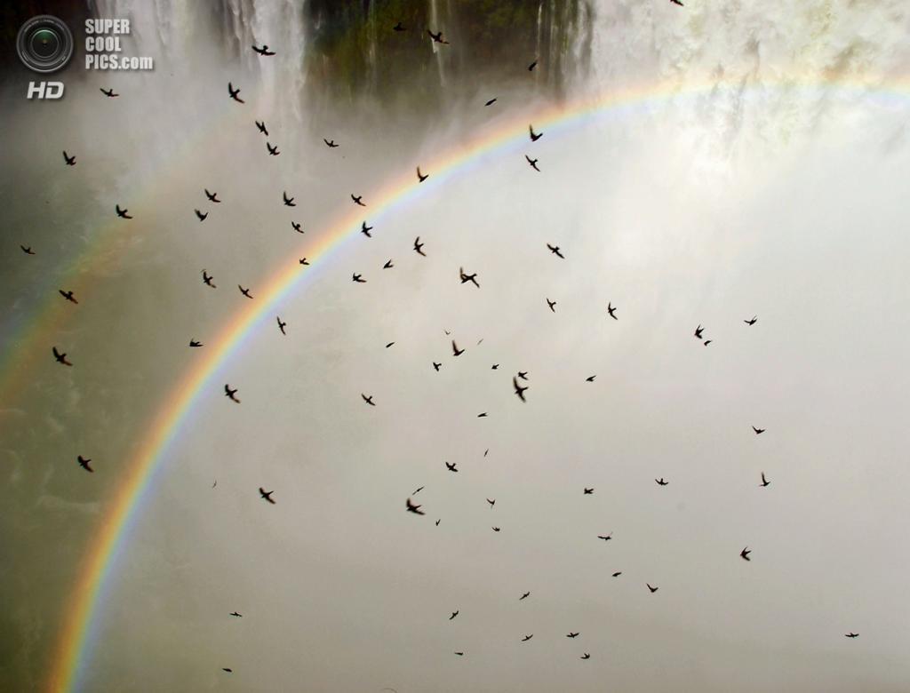 Граница Бразилии и Аргентины. Водопады Игуасу. (Mike Hope)