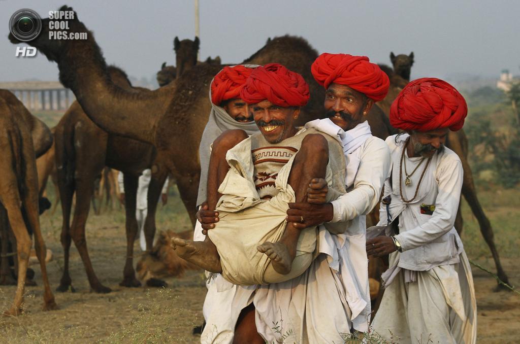 Индия. Пушкар, Раджастхан. 7 ноября. На ярмарке верблюдов. (AP Photo/Deepak Sharma)