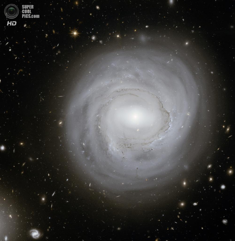 Галактика NGC 4921. (NASA, ESA and K. Cook (Lawrence Livermore National Laboratory, USA))