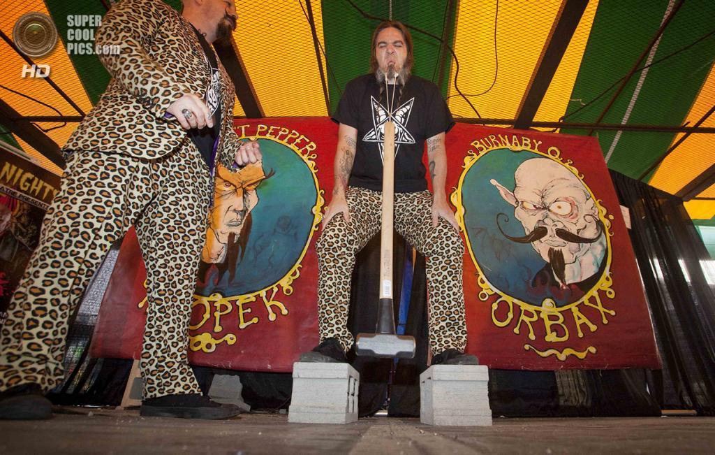 Канада. Ванкувер, Британская Колумбия.  30 октября. Свит Пеппер Клопек устанавливает рекорд, подняв 4,5-килограммовую кувалду с помощью крючков в щеках. (REUTERS/Ben Nelms)