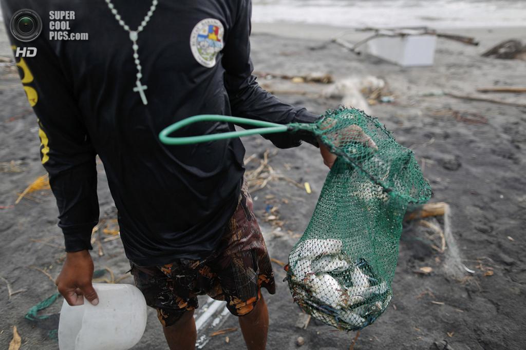 Филиппины. Танауан, Лейте. 20 ноября. Улов рыбаков. (REUTERS/Damir Sagolj)