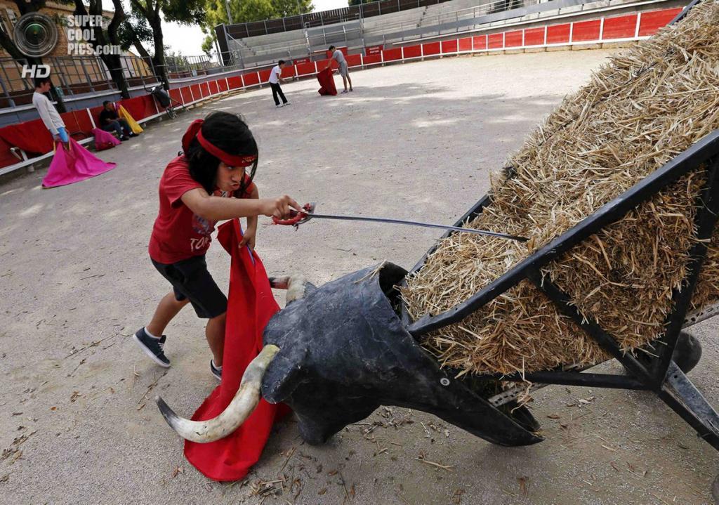 Франция. Ним, Гар. 25 сентября. Юный тореадор практикуется с муляжом быка. (REUTERS/Jean-Paul Pelissier)