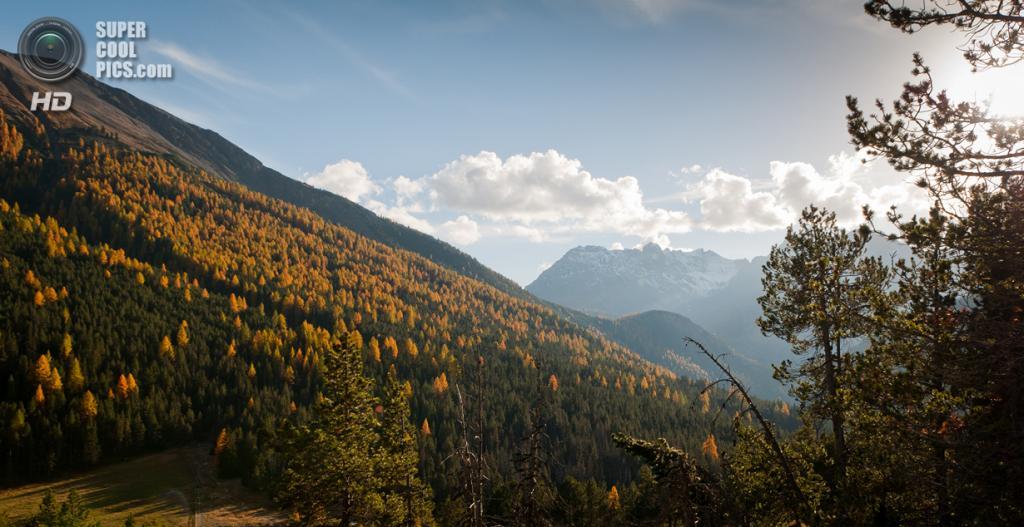 Швейцарский национальный парк. (Roman Sandoz)
