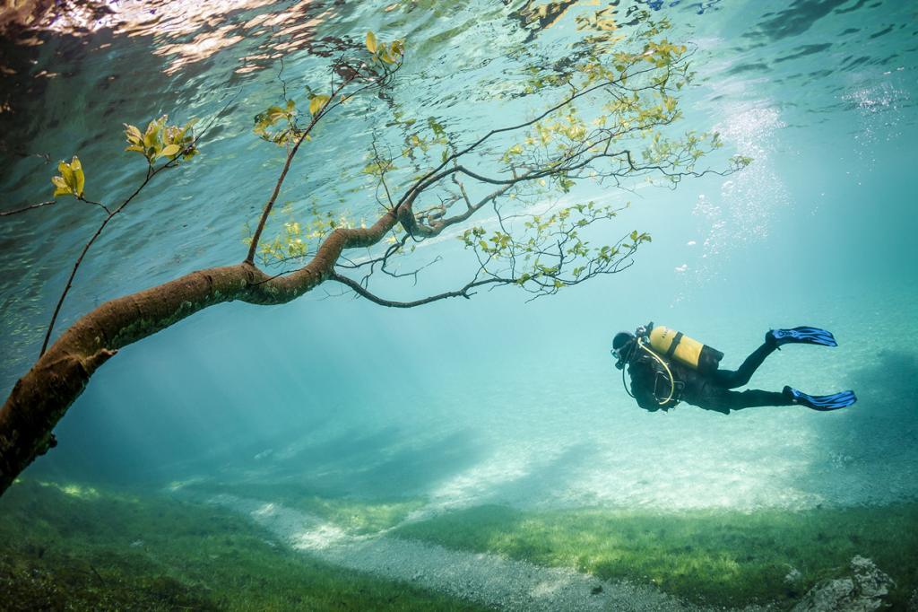 Волшебное озеро-парк (8 фото)