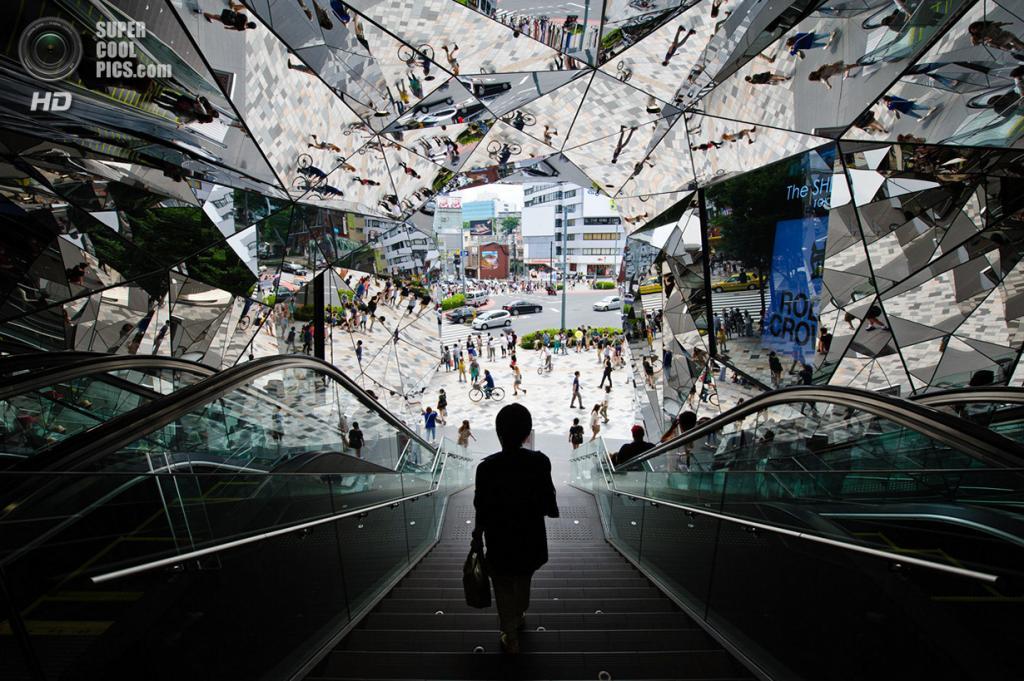 «Омохара». Место съемки: Япония. Токио. (Teruo Araya/National Geographic Photo Contest)