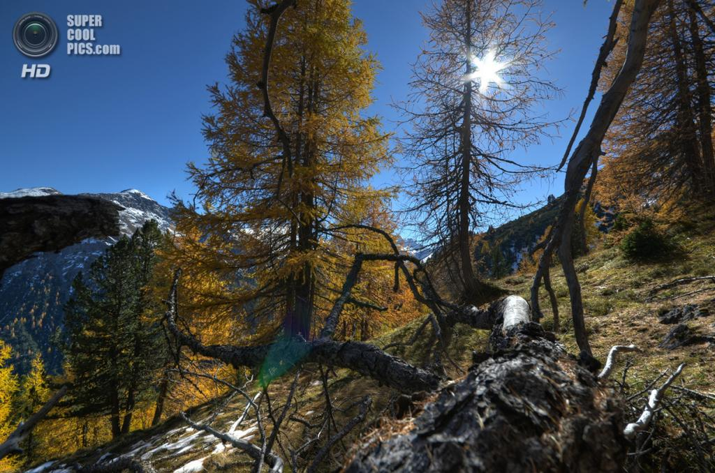 Швейцарский национальный парк. (13zeichen)