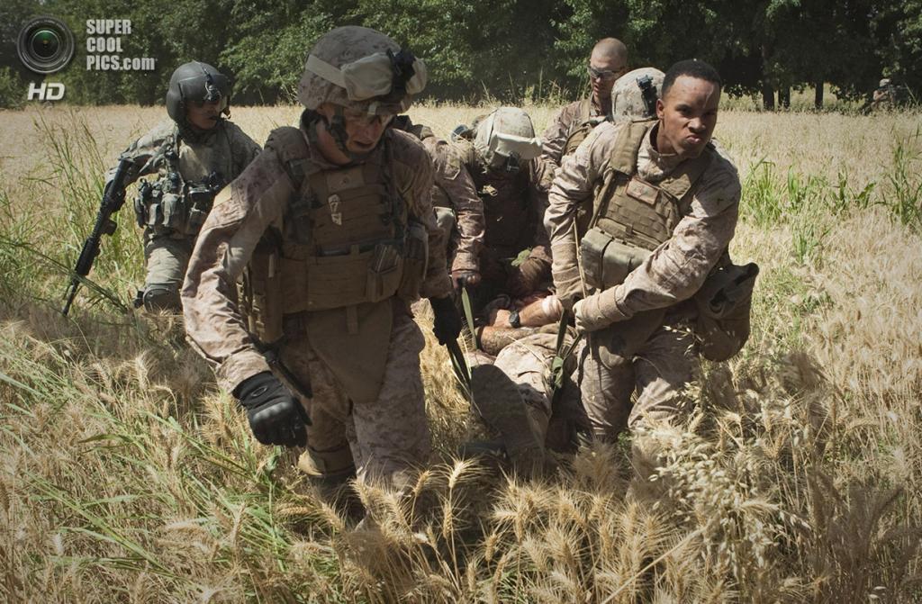 Афганистан. Сангин, Гильменд. 4 июня 2011 года. Морские пехотинцы эвакуируют раненного товарища Бёрнесса Бритта, попавшего под обстрел. (AP Photo/Anja Niedringhaus)