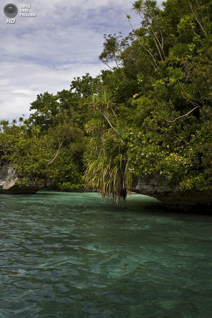 Острова архипелага Палау. (Black Lantern Synergy)