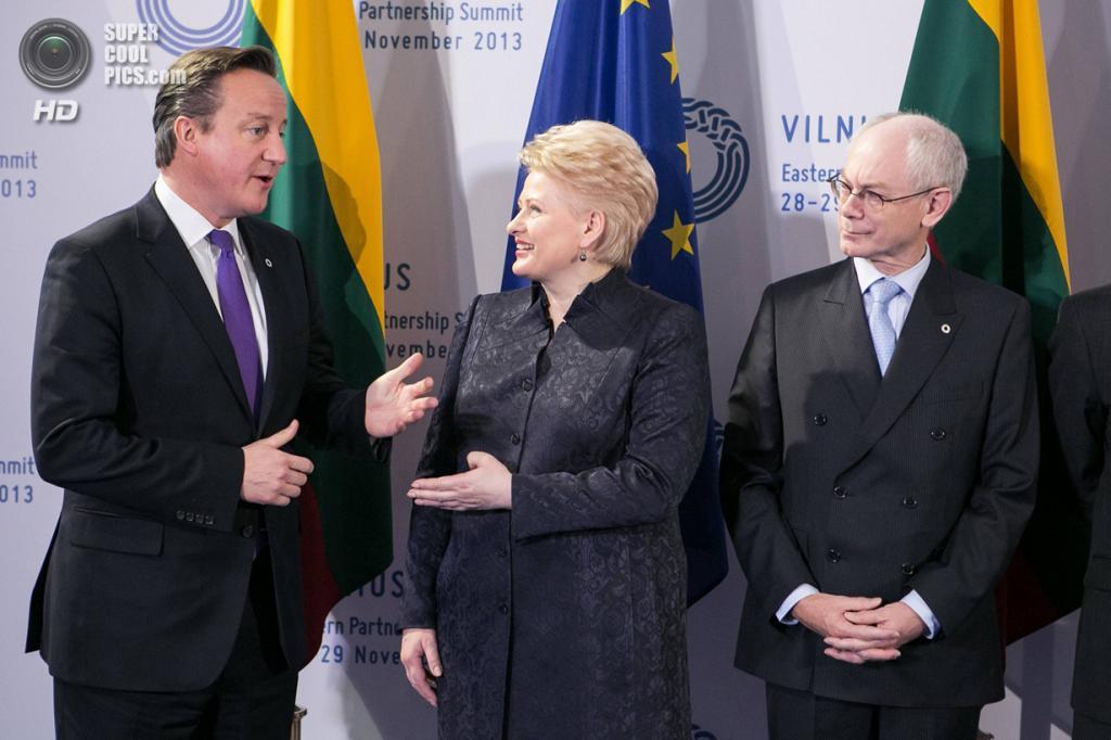 Литва. Вильнюс. 29 ноября. Премьер-министр Великобритании Дэвид Кэмерон во время саммита «Восточного партнерства». (REUTERS/eu2013.lt)