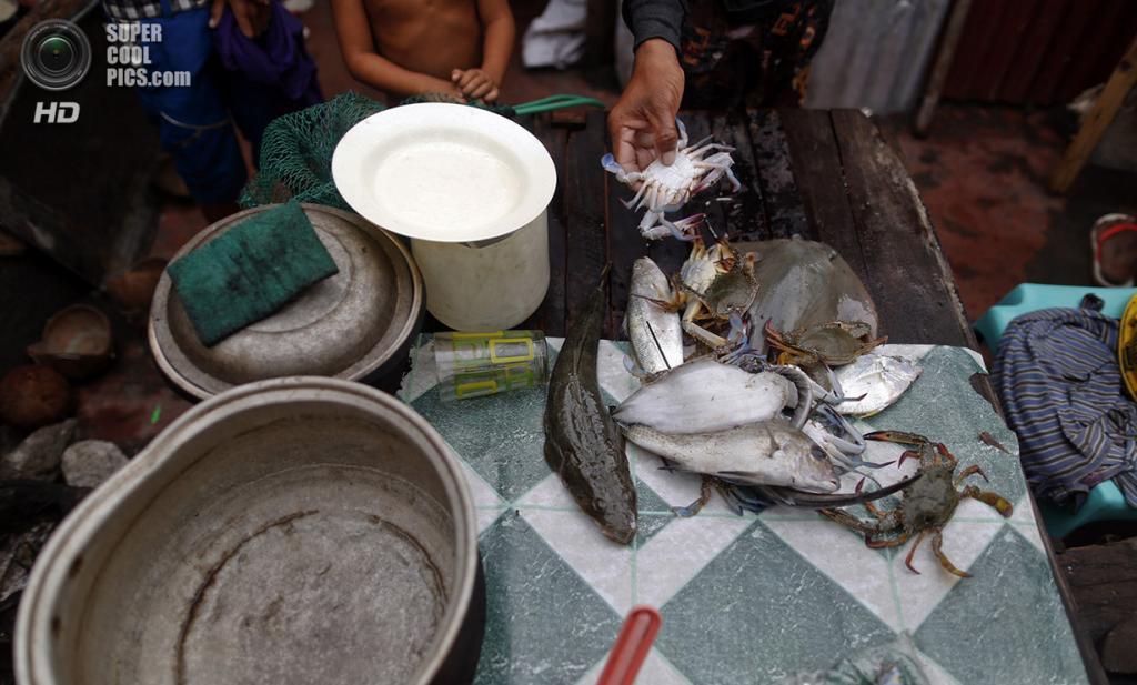 Филиппины. Танауан, Лейте. 20 ноября. Дневной улов на столе в убежище для выживших. (REUTERS/Damir Sagolj)