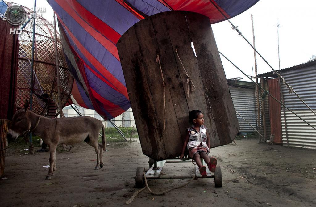 Бангладеш. Джамша. 1 ноября. 3-летний Шобуйх Султанг сидит у доски для метания ножей. (Getty Images)