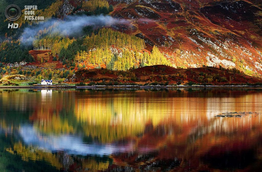 «Роршах». Место съемки: Шотландия. Северо-Шотландское нагорье. (Sorin Rechitan/National Geographic Photo Contest)