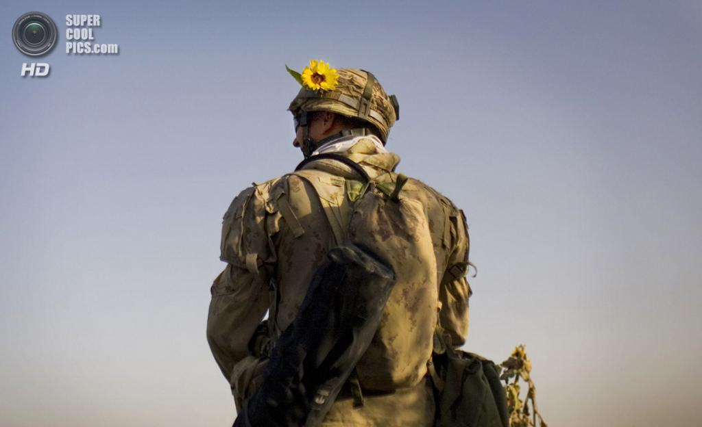 Афганистан. Салават, Кандагар. 9 сентября 2010 года. Канадский солдат во время патрулирования. (AP Photo/Anja Niedringhaus)