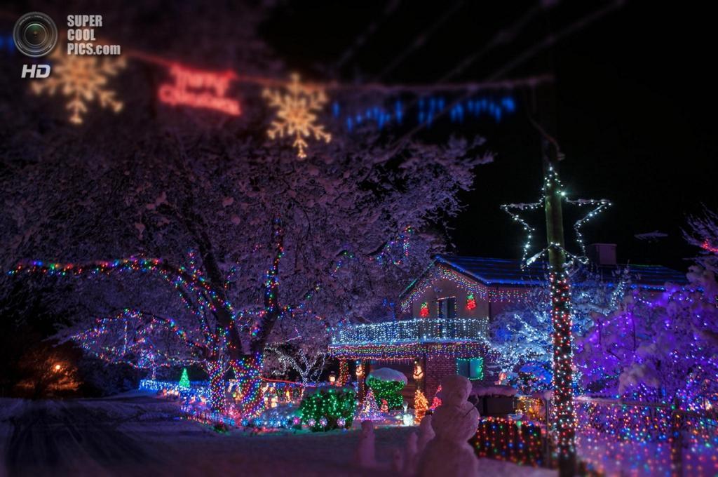 Рождественские огни. (Jim Cook)