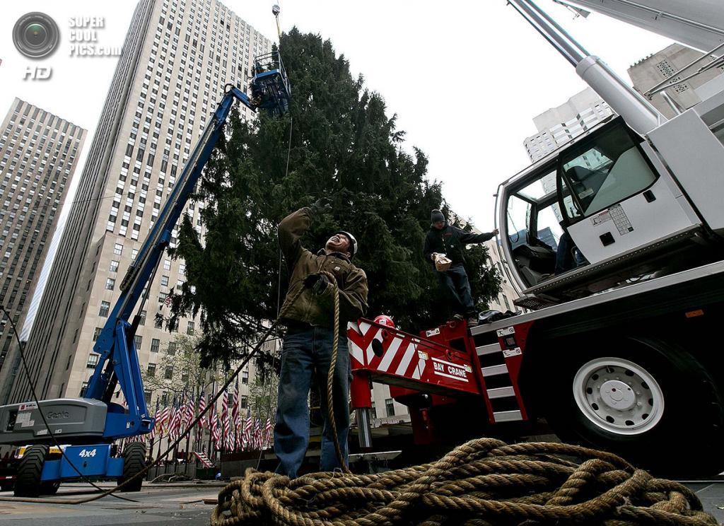 США. Нью-Йорк. 8 ноября. Установка рождественской ёлки у Рокфеллер-центра. (AP Photo/Richard Drew)