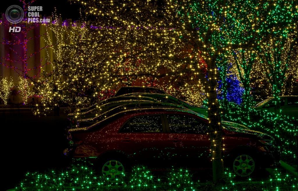 Рождественские огни. (Jim Remington)