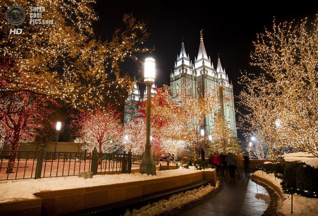 Рождественские огни. (Robbie Petersen)