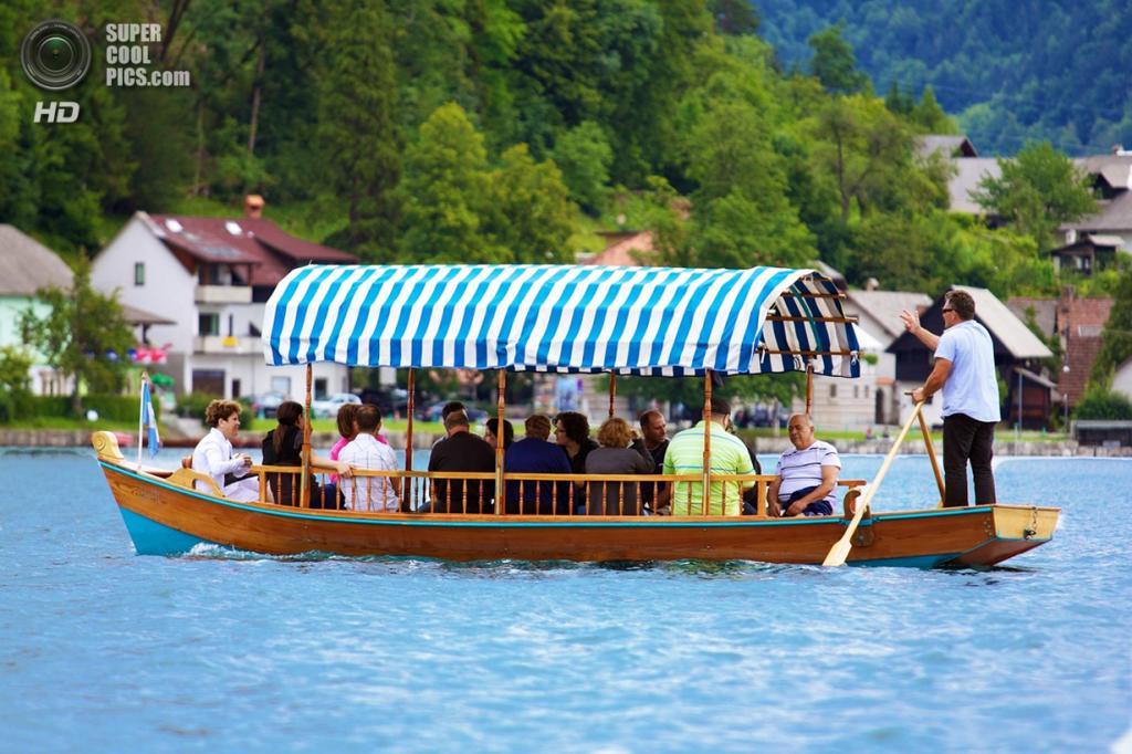 Словения. Крайна. Бледское озеро. (Saurabh Garg)