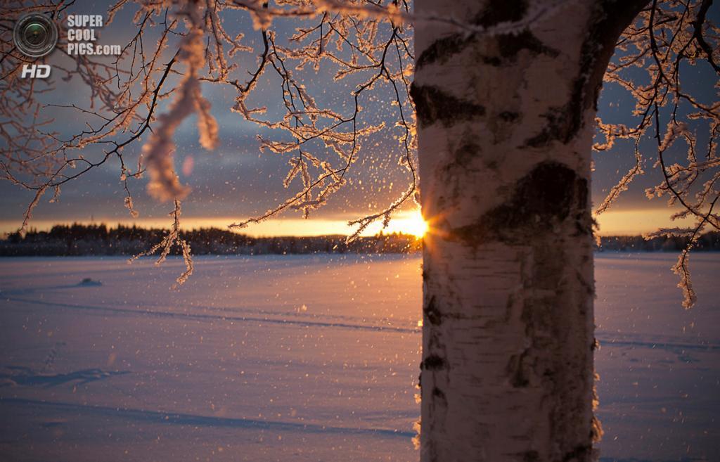 Зимний пейзаж. (Jne Valokuvaus)