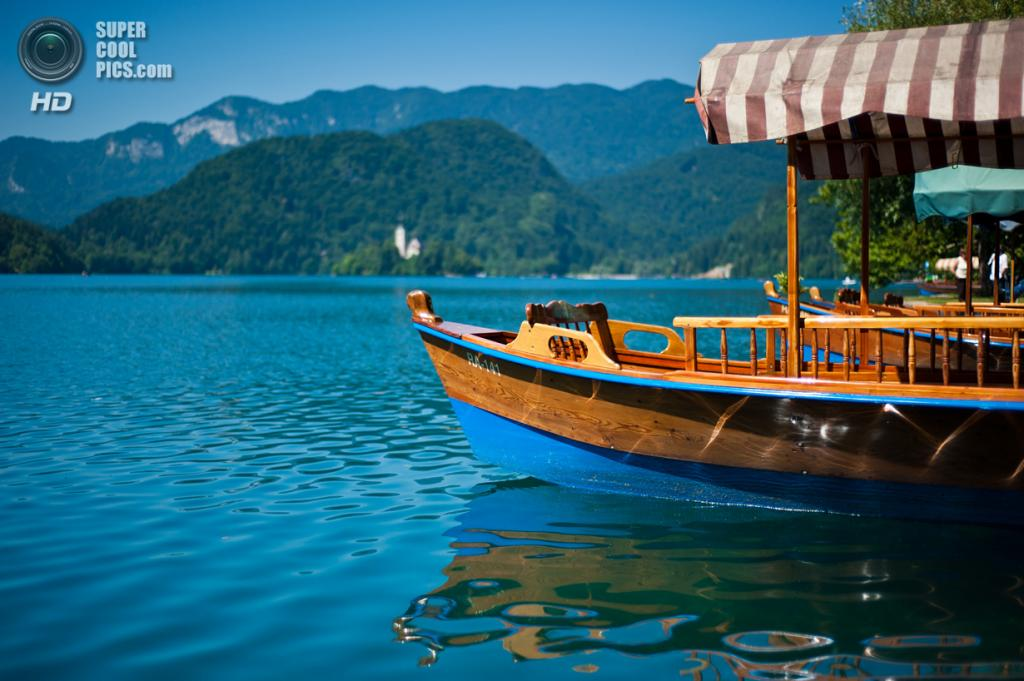 Словения. Крайна. Бледское озеро. (Sebastian Bergmann)