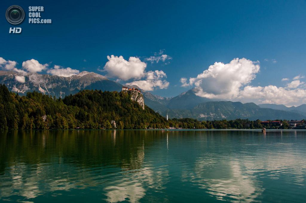 Словения. Крайна. Бледское озеро. (Vlado Ferencic)