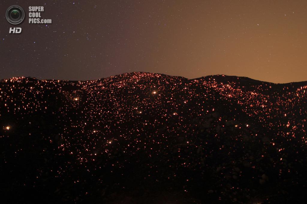 США. Баннинг, Калифорния. 8 августа. Огни лесного пожара Silver Fire. (REUTERS/David McNew) — Пост на сайте