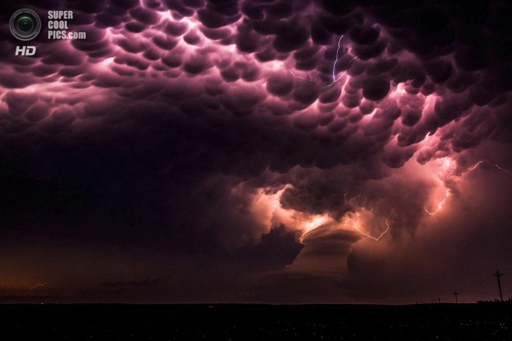 «Посланники». Место съемки: США. Брокен-Боу, Небраска. (Anne Goforth/National Geographic Photo Contest)