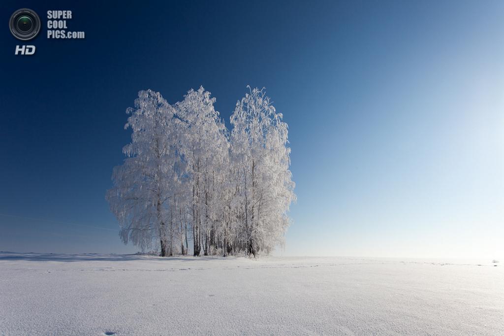 Зимний пейзаж. (Denis Belyaev)