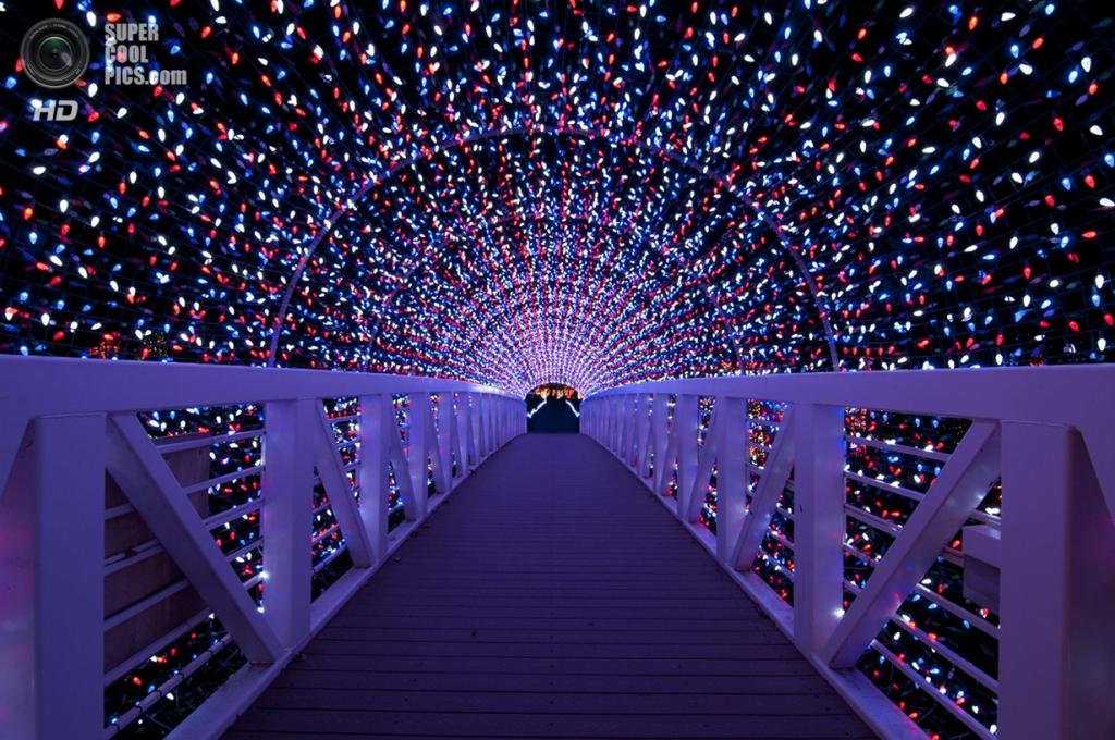 Рождественские огни. (Preston Power)