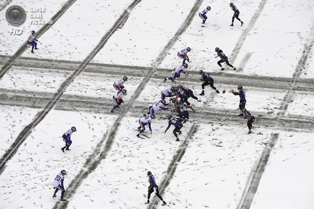 США. Балтимор, Мэриленд. На матче НФЛ. (Patrick Smith/Getty Images)
