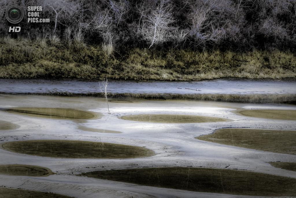 Канада. Британская Колумбия. Пятнистое озеро. (Greg Bate)