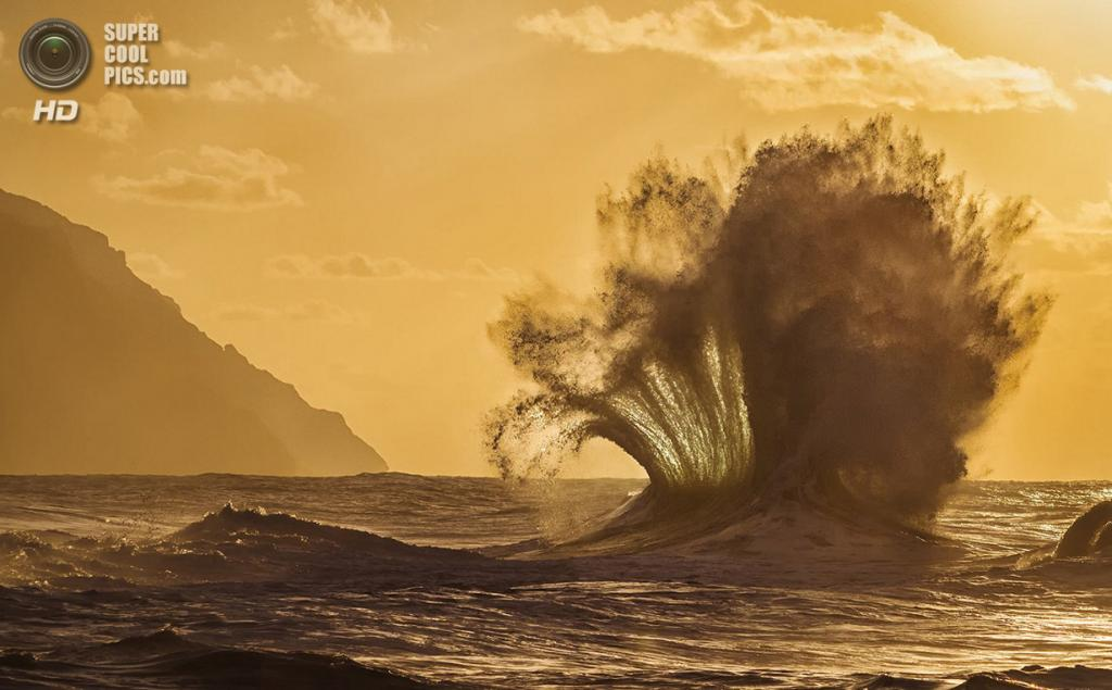 «Фанфары». Место съемки: США. Кауаи, Гавайи. (Lace Andersen/National Geographic Photo Contest)