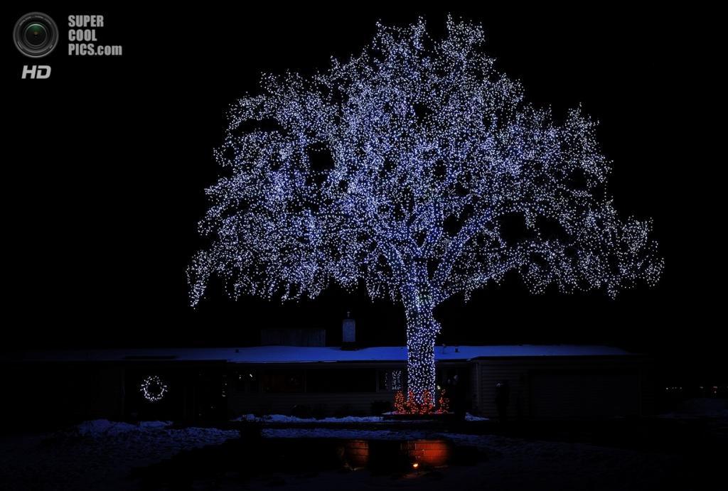 Рождественские огни. (Dan Anderson)