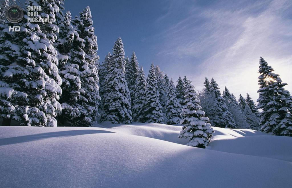Зимний пейзаж. (Silvano Fabris)