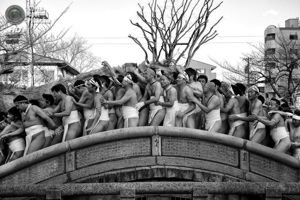 «Сохраняя тепло». Место съемки: Япония. Инадзава, Айти. (Julian Krakowiak/National Geographic Photo Contest)