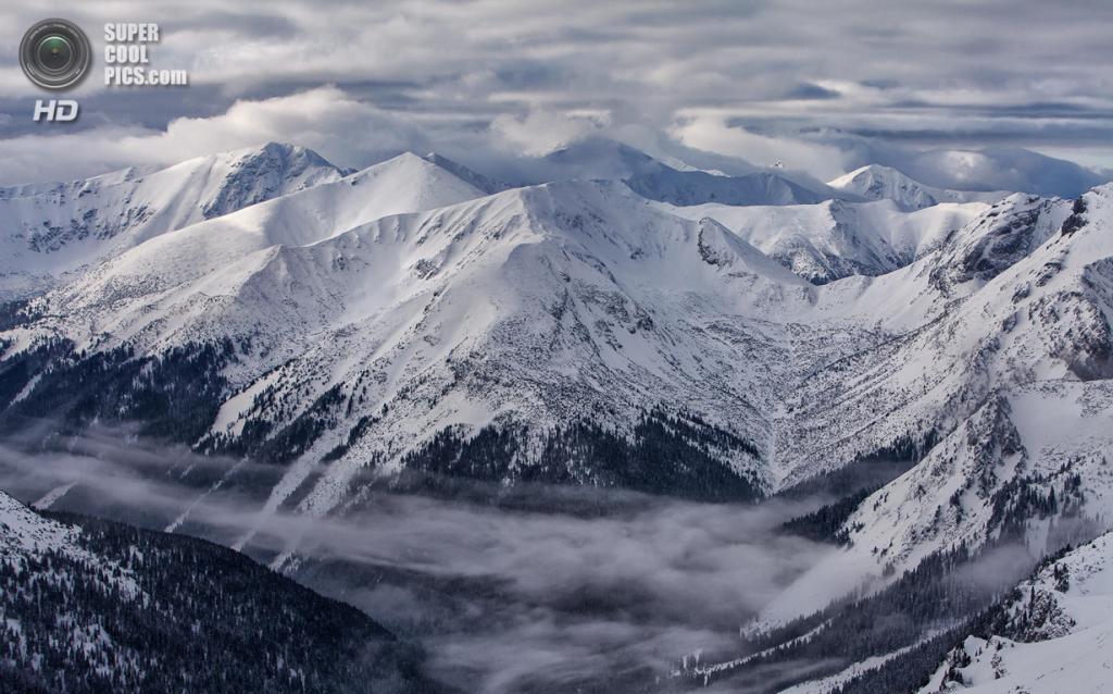 Зимний пейзаж. (Karol Bryd)