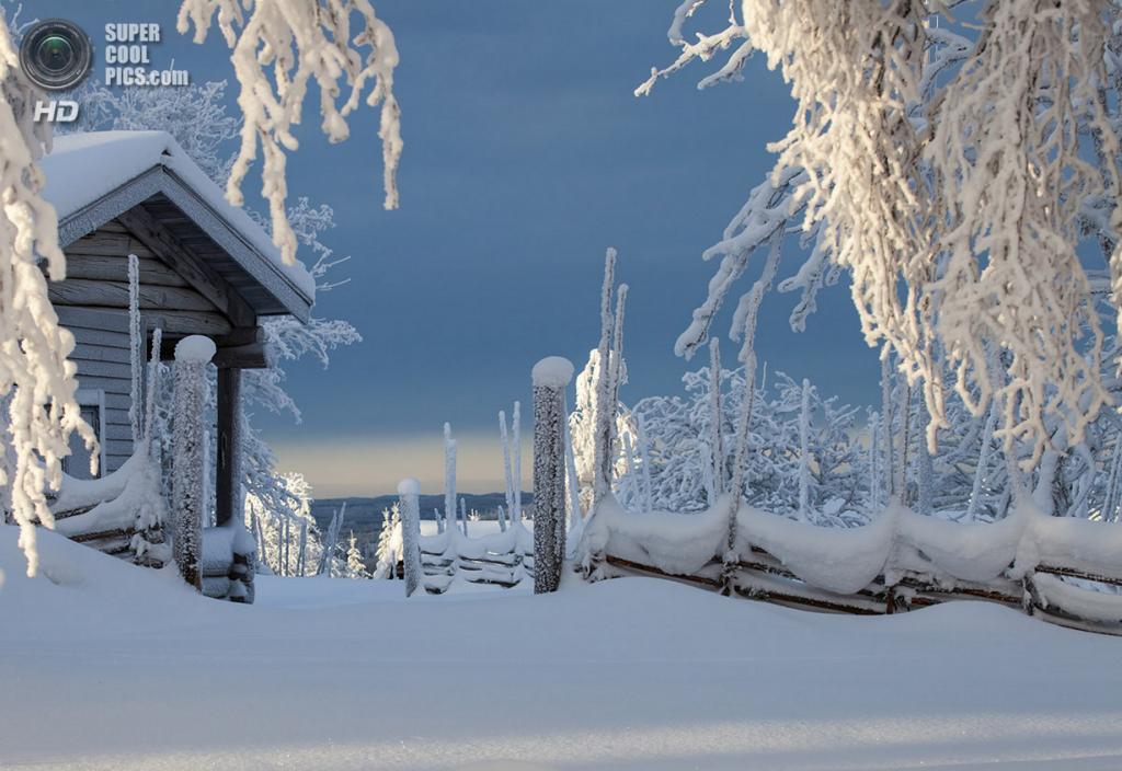 Зимний пейзаж. (Lena Östberg)