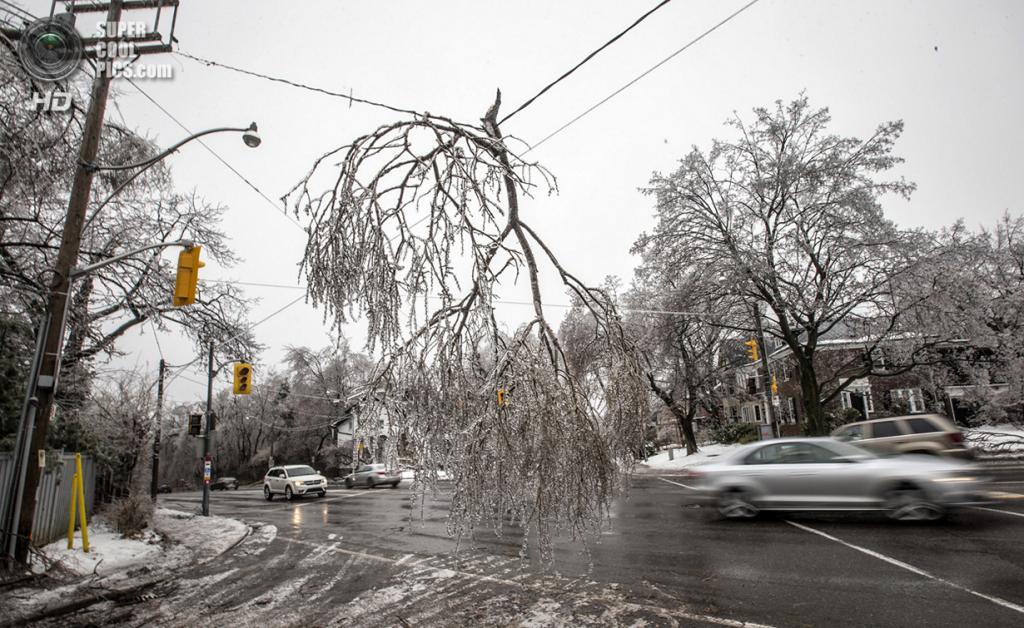 Канада. Торонто, Онтарио. 22 декабря. Сломанная ветвь, висящая прямо на проводах над проезжей частью. (REUTERS/Mark Blinch)