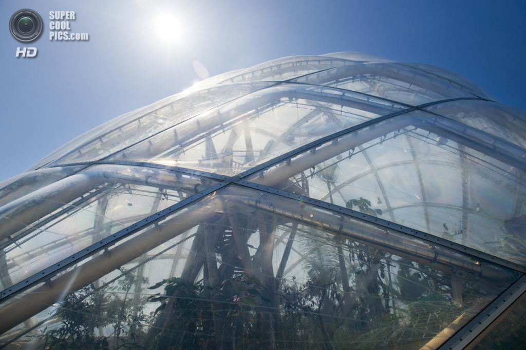 Дания. Орхус, Центральная Ютландия. Оранжерея Sustainable Hothouse, разработанная C.F. Møller Architects. (Julian Weyer)