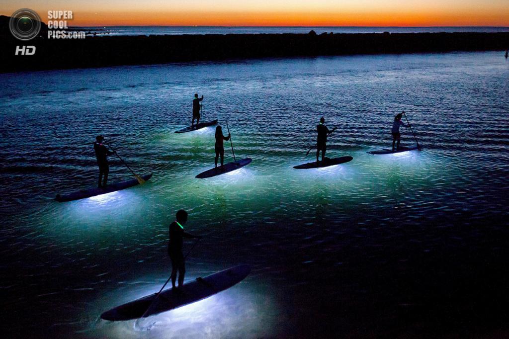 «Плывущие мечты». Место съемки: США. Деннис, Массачусетс. (Julia Cumes/National Geographic Photo Contest)