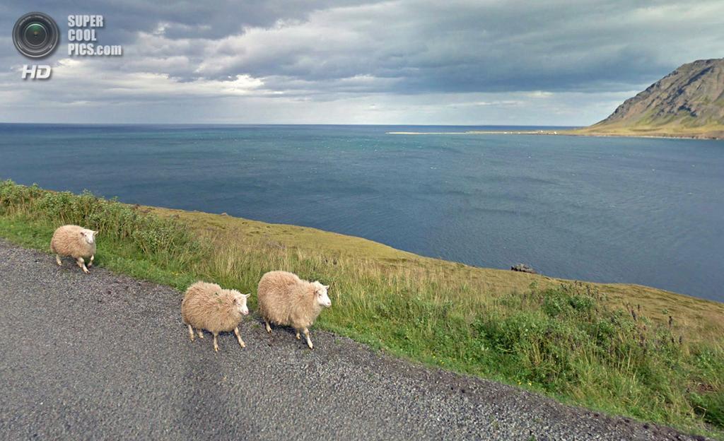 Исландия. Сиглюфьордюр. (Google)