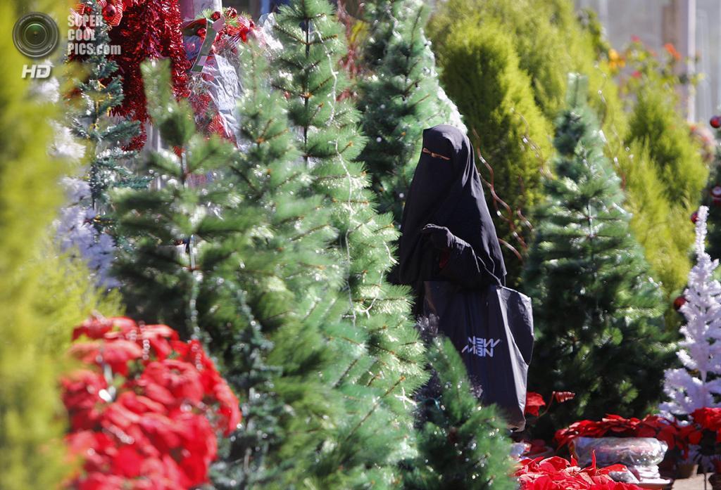 Египет. Каир. 23 декабря. Египтянка рассматривает рождественские елки. (AP Photo/Amr Nabil)