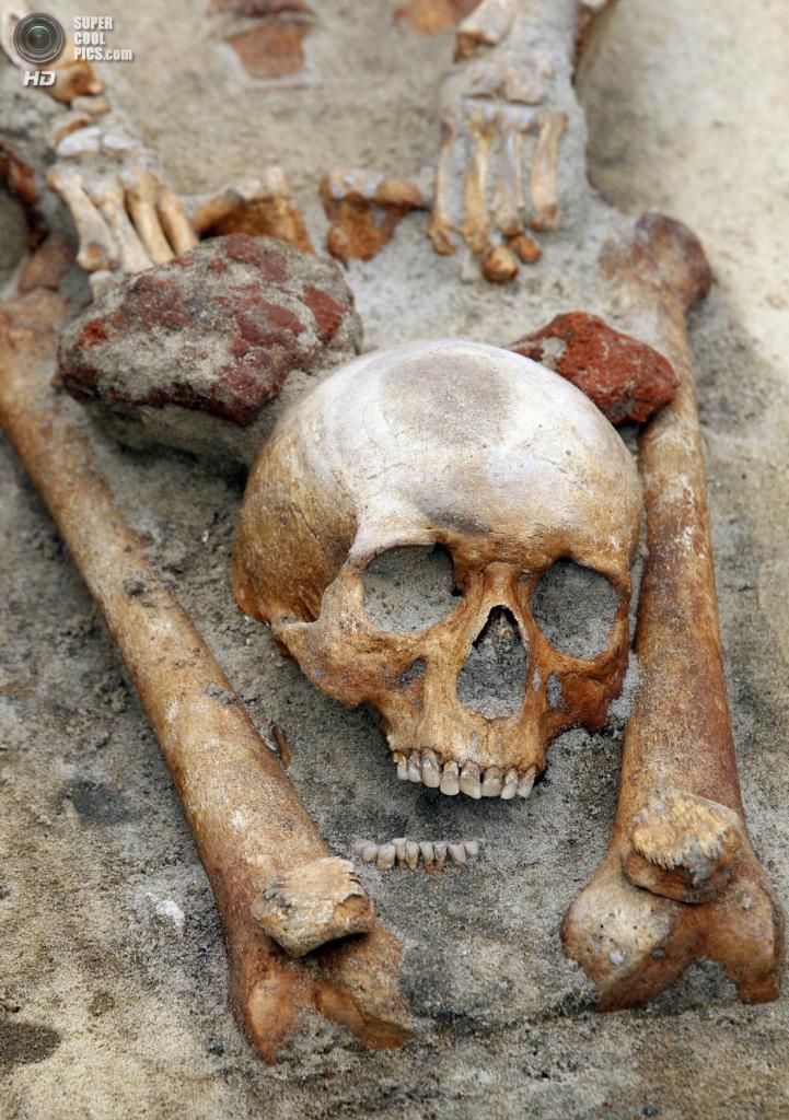 Польша. Гливице, Силезское воеводство. 15 июля. Раскопки «кладбища вампиров». Археологи обнаружили древнее захоронение, датируемое XVII-XVIII веком. Пять найденных скелетов, по мнению учёных, принадлежат самым что ни на есть «вампирам» — тем, кого всерьёз принимали за «вампиров» хоронившие. Скелеты были обезглавлены, а их черепа лежали между ногами. Согласно древним преданиям, это один из наиболее распространённых способов захоронения вампиров. В древности считали, что так вампир не сможет отыскать свою голову и вернуться к жизни. (EFE/Andrzej Grygiel) — Пост на сайте