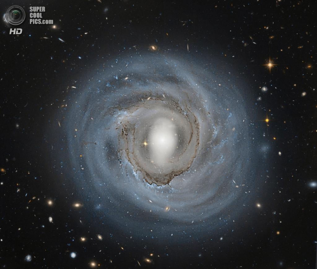 NGC 4921. Её называют анемичной спиральной галактикой. Это значит, что у неё низкое количество образования новых звёзд, и отсюда низкая поверхностная яркость. (Hubble Legacy Archive, ESA, NASA) — Пост на сайте