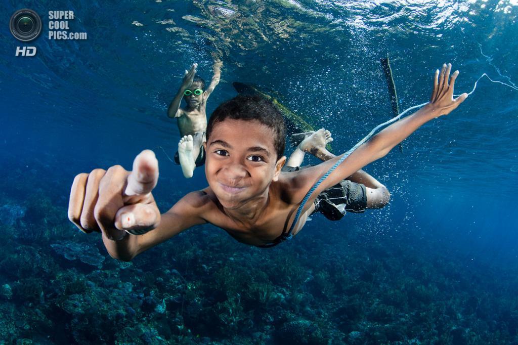 «Незнакомец под водой». Место съемки: Индонезия. Алор, Восточные Малые Зондские острова. (Shawn Heinrichs/National Geographic Photo Contest)