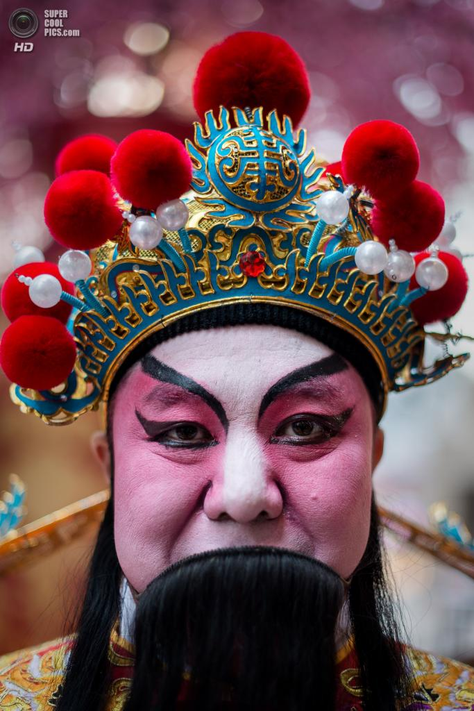 Китай. Гонконг. 23 января. В преддверии Китайского Нового года. (PHILIPPE LOPEZ/AFP/Getty Images)