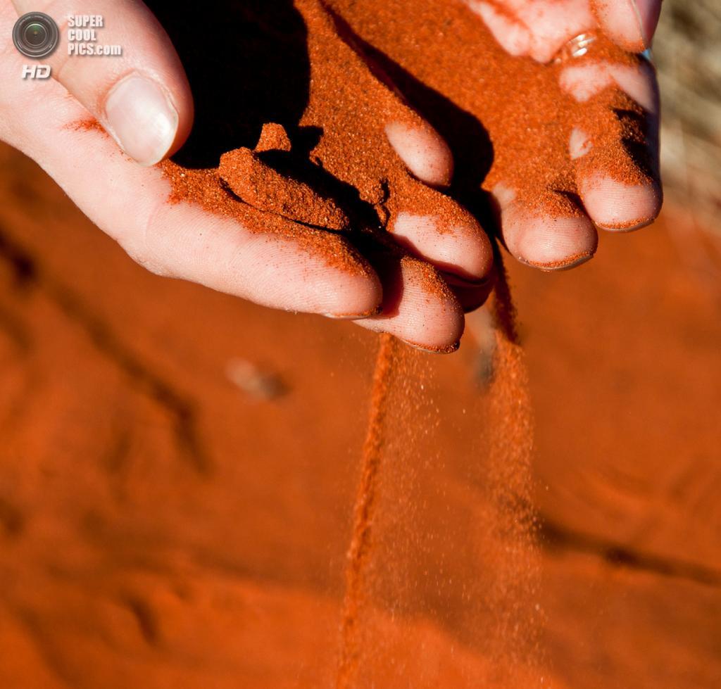 Австралия. Северная территория. У скалы Улуру в Национальном парке Улуру-Ката Тьюта. (Eleonora P.)