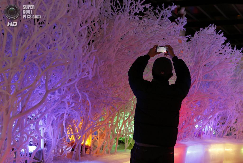 Тайвань. Тайбэй. 23 января. На выставке Fantasy Ice World. (Ashley Pon/Getty Images)