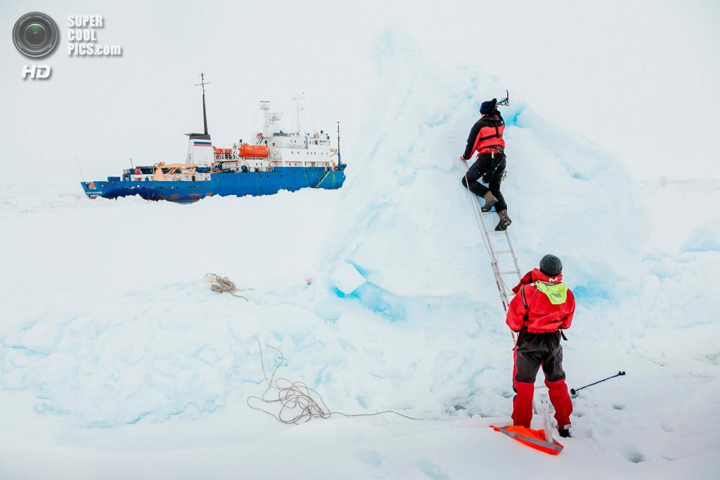 Антарктида. Застрявшее во льдах судно «Академик Шокальский». (Andrew Peacock/AFP PHOTO)