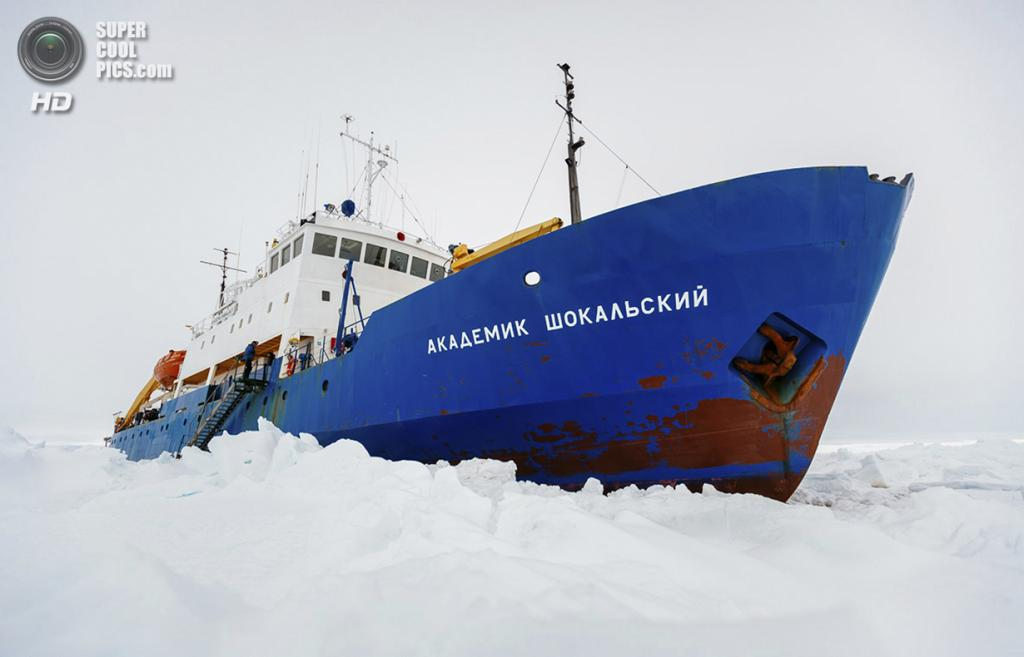 Антарктида. Застрявшее во льдах круизное судно «Академик Шокальский». (Andrew Peacock/AFP PHOTO)